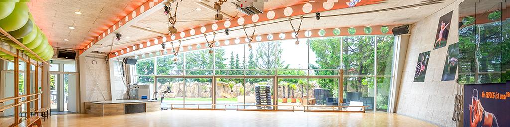 15_Turnsaal
